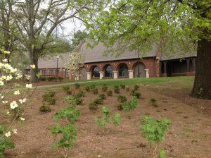 Avondale Villa and Garden